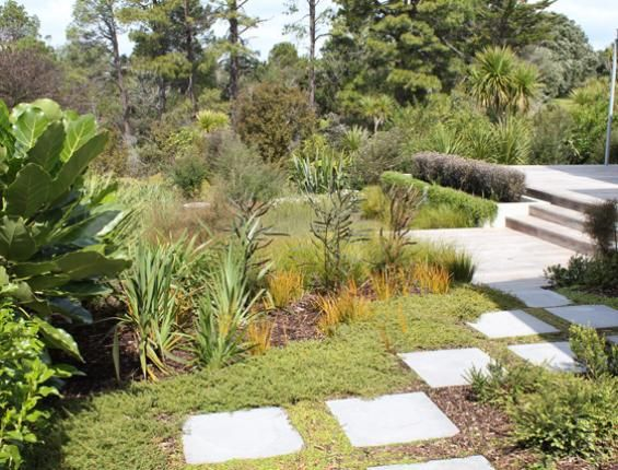 114 best images about new zealand designed gardens on for Native garden designs nz