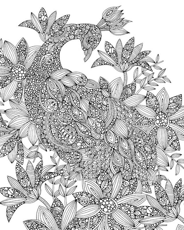 Peacock By Valentina Ramos Available In Canvas Or Poster At Canvasondemand Com Coloring Canvas Canvas Drawing Canvas Art Decor