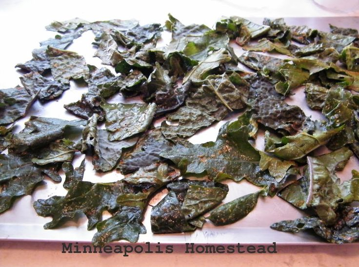 kale chips: spicy and cheesy 2 ways, one is #vegan #paleo #raw