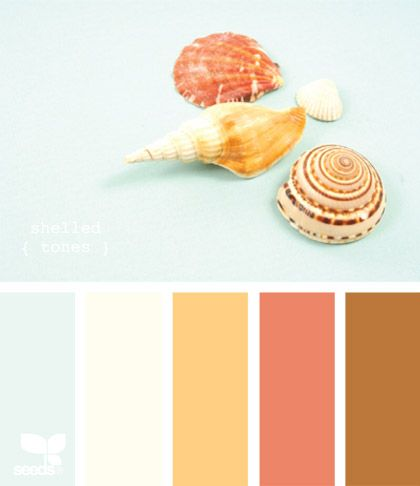 wedding color combo: coral, brown, light blueColor Palettes, Bathroom Colors, Fun Recipe, Shells Tone, Beach Cottages, Bedrooms Colors, Decoratingbeach House, Colors Palettes, Cottages Decoratingbeach