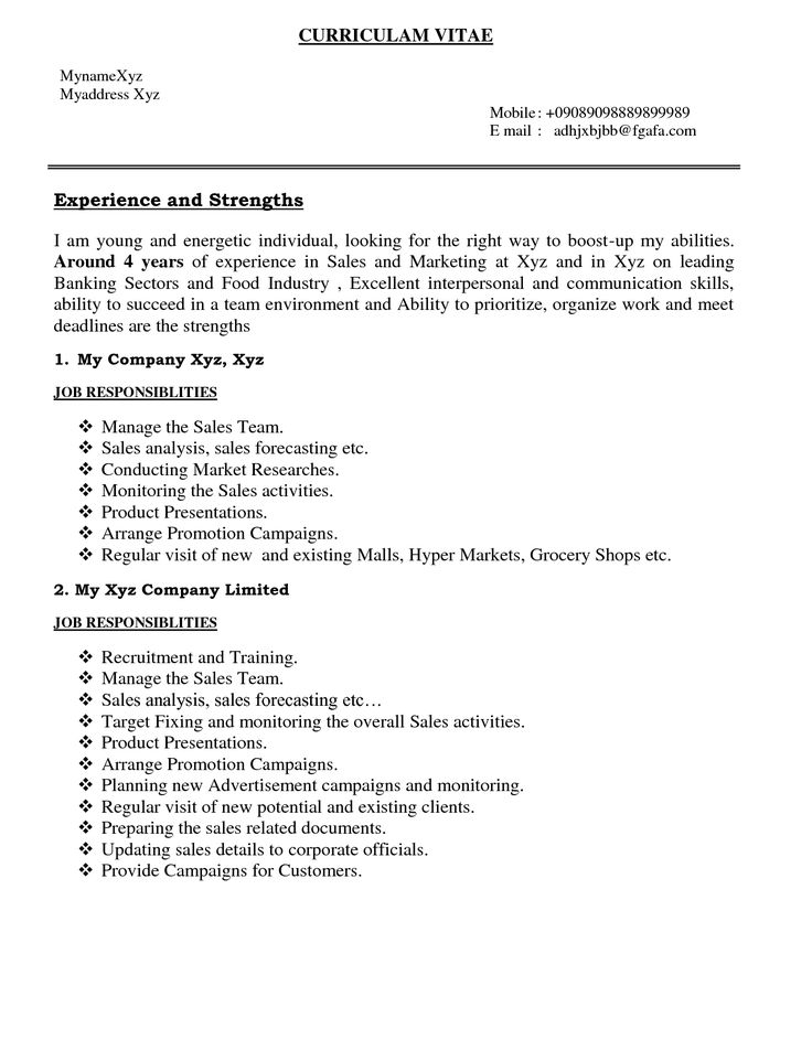 bank resume summary examples entry level format download pdf