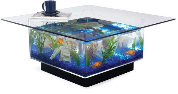 Installing @aquarium is the latest trend. Visit  for latest designs and be first in the race.