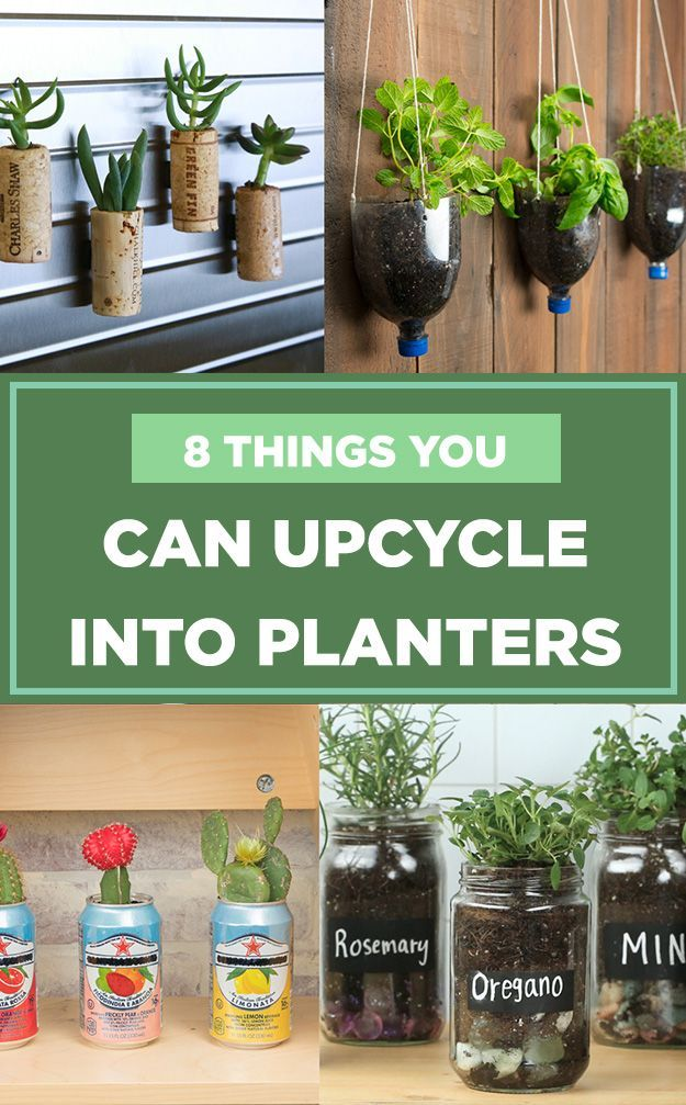 Instructions For Hydroponic Gardening In Mason Jars Have Extra
