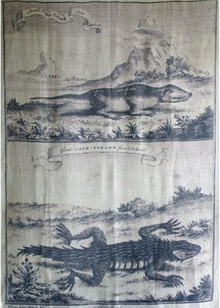 Crocodile Wall Panel 200x150cm