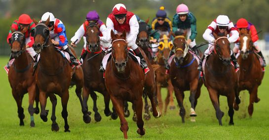 No deposit #FreeBets online under guidance of #BestTipster uk…