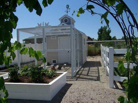 Headed to the chicken coop | Gates Interior Design - Amanda Gates
