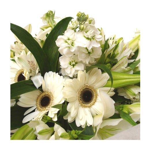 Classic White Bouquet - Auckland Only - Bestow Gifts + Flowers