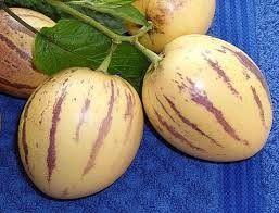 meloenpeer recepten