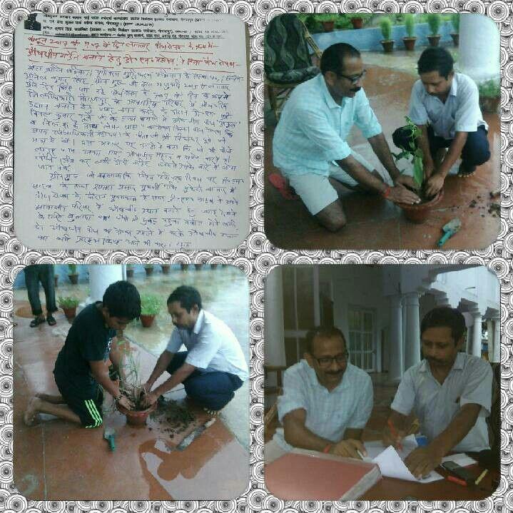 जिलाधिकारी विमल कुमार दुबे जी के साथ औषधीय पौध का रोपण करते हुए अनिल कुमार सिंह,ग्रीन गुरु जी। 6 जून 2017 को 707 वे दिन लगातार पौध रोपण के क्रम में जिलाधिकारी महोदय के आवासीय परिसर के गमले में-