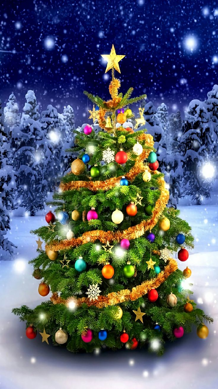Новогодняя елка фотографии и открытки
