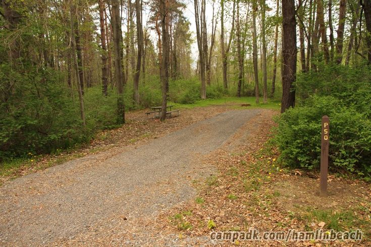 Campsite Photo of Site 50 at Hamlin Beach State Park, New York - Looking at Site…