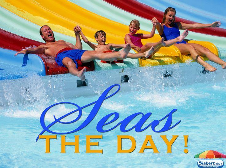 #SEAS the day!    #seastheday #seizetheday #sandbridge #vabeach #virginiabeach…
