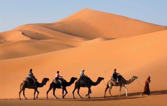 #CamelSafaries is an expert operator company that specialized in private tours of Morocco .Company's best offers visit @ http://camelsafaries.net/