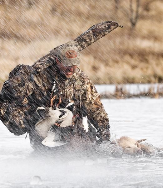 duck and goose hunting games