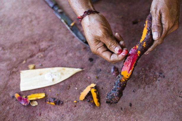 Harvesting the dye material