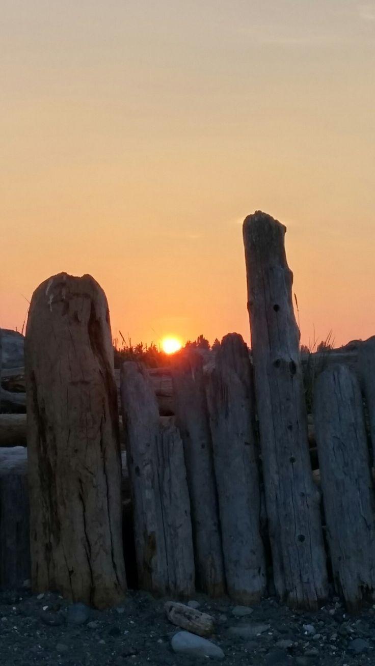 Sunset on the Beach Log Fence.