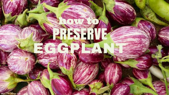 Bumper crop of eggplant in the garden?Learn how to preserve eggplant by freezing and dehydrating to enjoy it all year long!