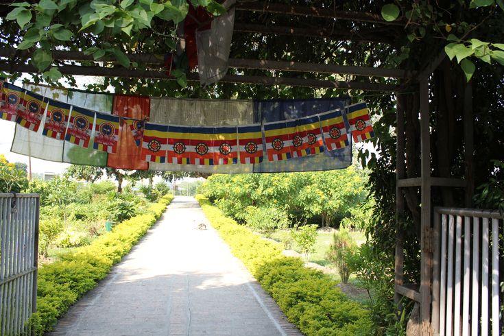 Delhi to Katmandu, Part 9
