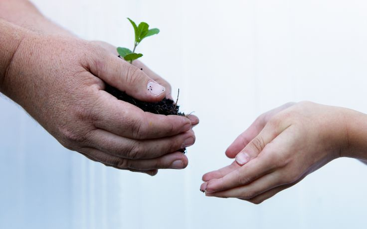 5 tips to engage families in your fundraiser - article about fundraising by Living Fundraisers