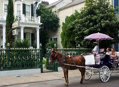 Mule drawn cart at the Cornstalk Fence Hotel at 915 Royal Street in New Orleans' French Quarter: Mule Drawn, Louisiana New Orleans, Fence Hotels, Drawn Carts, The Good, Orleans Mule, Good Times, Nouvelle Orleans, Louisiana Mardi