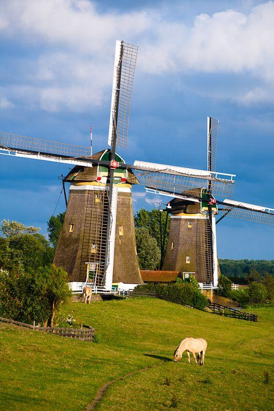 Windmills in Stompwijk, Zuid Holland