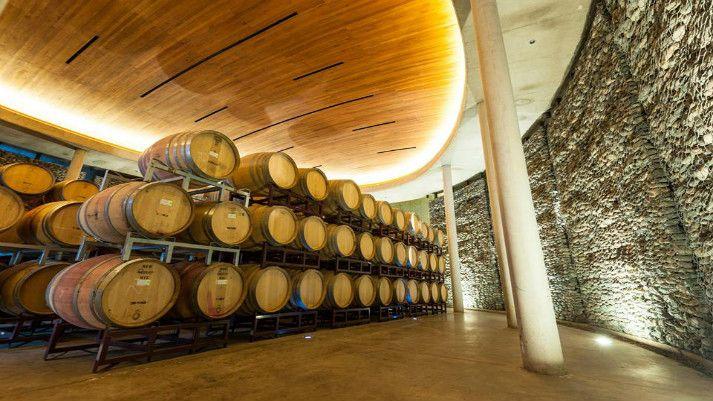 Gouté | Vinhedos Chilenos Degustação dos melhores vinhos da região.