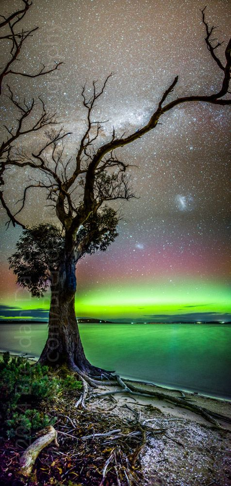Aurora Australis, with central band of the Milky Way and the Large and Small Magellanic Clouds, taken by Brendan Davey on April 30, 2014 - Tasmania