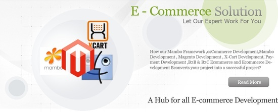 http://www.i-webservices.com/ We are one of the trusted and highly acclaimed e-commerce provider brings in the revolution through quality services and reliable e-commerce web software, ecommerce website design, e-commerce shopping carts,ecommerce website solution software and a support system working 24/7 with guaranteed customer satisfaction.