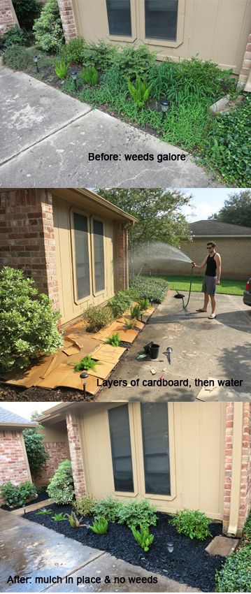 This site gives clear explanations with pictures of how to correctly use cardboard and mulch as an organic weed barrier. (Layers of newspaper can also be used.)