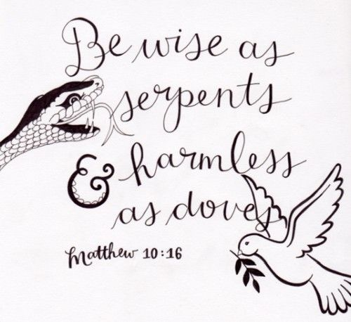 """Look, I am sending you out as sheep among wolves. So be as shrewd as snakes and harmless as doves."" Matthew 10:16"