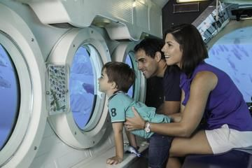 Watch the excitement on your children's faces - and your own - as you explore the ocean depths in a real submarine! #Barbados