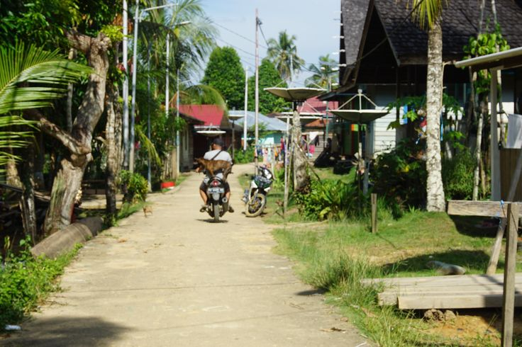 A Village   #Borneo #Travel