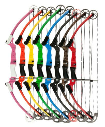 Mathews Genesis Black One Cam Youth Bow LH Archery    This is the bow I own. I used to have the red one but now I have the pink one