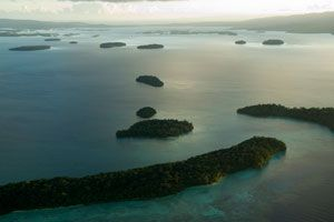 Tema de 2014: Diversidad biológica de las Islas