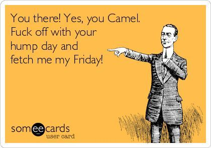 You there! Yes, you Camel! Fuck off with your hump day and fetch me my Friday! | eCards