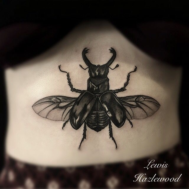 Stag beetle under ion black and grey tattoo on Leah @lewishazlewood Stag and Dagger tattoo Somerset