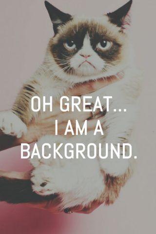 Grumpy Cat Great I Am A Background iPhone 6 Wallpaper