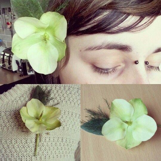 Hellebore buttonhole www.facebook.com/pickmefloristry