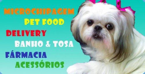 Pet Shop Porto Alegre - Telefone, Endereço | Raças de Cachorros