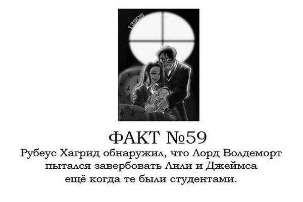 факты о гарри поттере: 22 тыс изображений найдено в Яндекс.Картинках