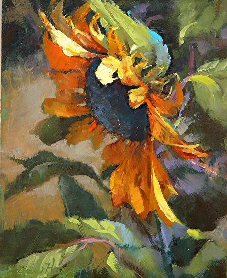 Single Sunflower by Ann Hardy Oil ~ 10 x 8