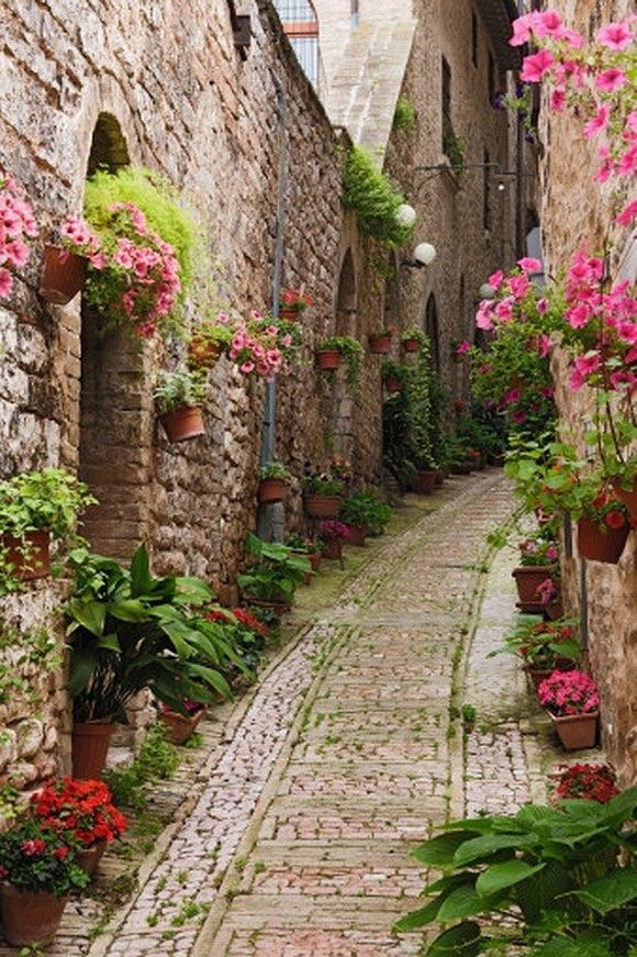 Street in Giverny, France: Giverny is a village in the Eure department in northern France. It is best known as the location of Claude Monet's (famous painter) garden and home. Narrow street from the image above is a true floral park and therefore it is very pleasant to walk.