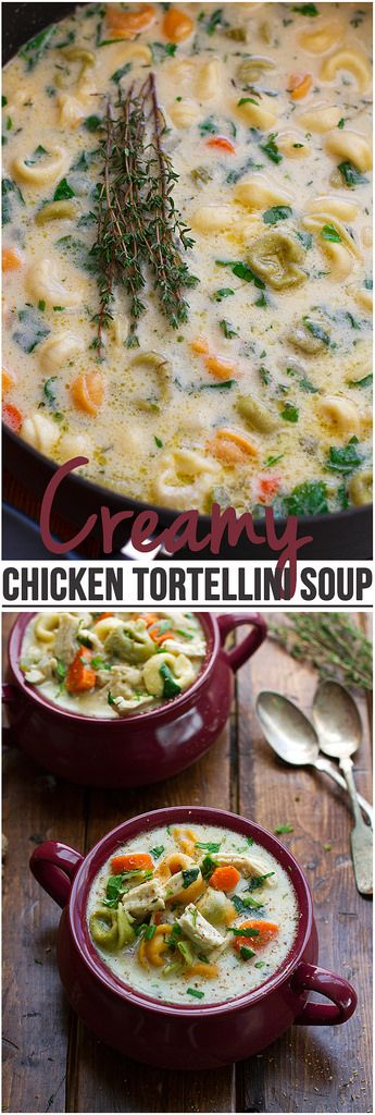 This soup is the perfect comfort food. Similar to a creamy chicken noodle soup but with tortellini instead! This soup is fall perfect! | Littlespicejar.com #fallrecipes #soup #chickennoodlesoup