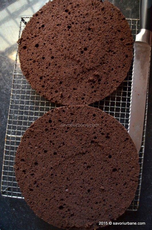 Blat de tort pandispan cu cacao (26)