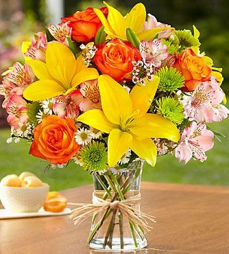 1800 flowers coupon code 15% off fields of europe - 1800 flowers coupon code 15% off, By using promo code svaf, save 15% off discount on fields of europe at 1800 flowers online store with 1800 flowers coupon code 15% off.