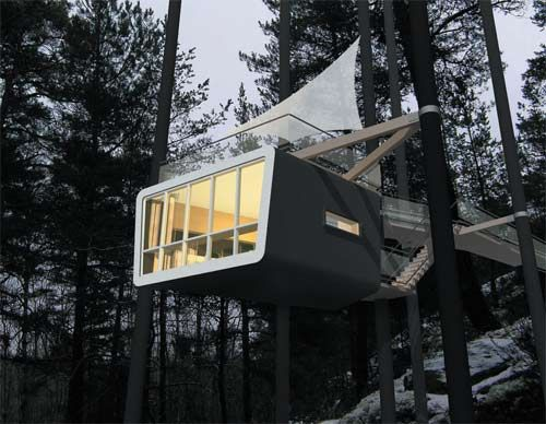 Tree House Hotel - The Cabin.  Room with a view!