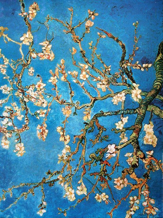 Vincent Van Gogh : Rama de almendro en flor, 1890