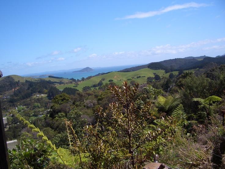 views from Driving Creek Railway Coromandel North Island