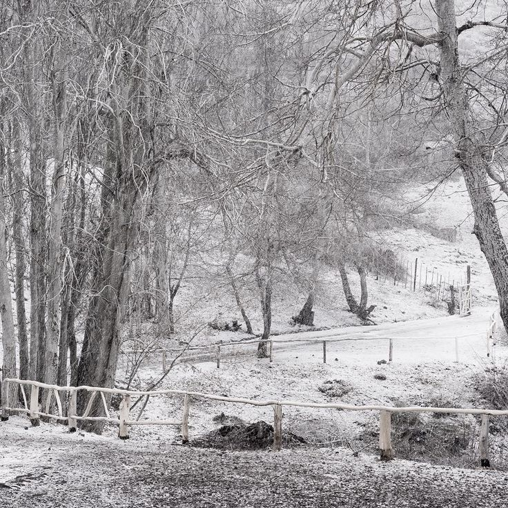 #winter #Chile #San_Jose_de_Maipo #Lagunillas #snow