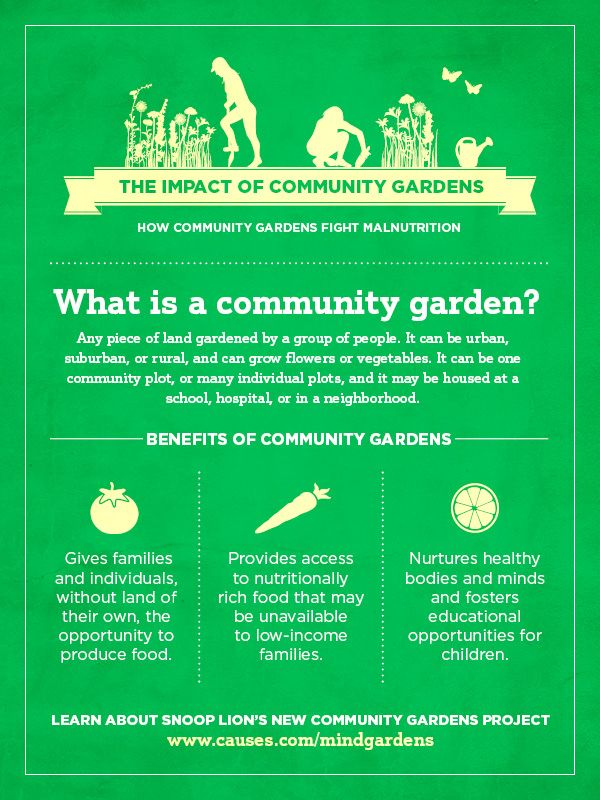 81 best Bereas East Ridge Community Garden images on Pinterest